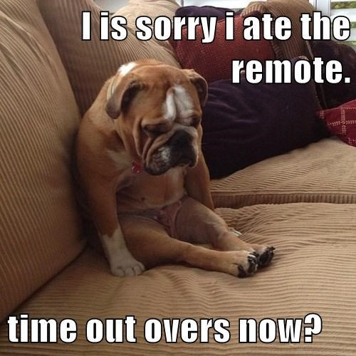I is sorry i ate the remote. time out overs now?