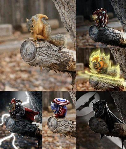 squirrel I AM THE NIGHT superheroes - 7856560640