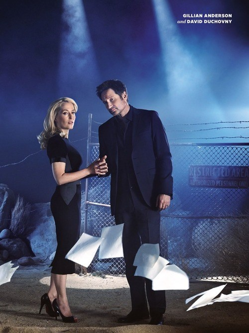 gillian anderson,reunion,David Duchovny,x files