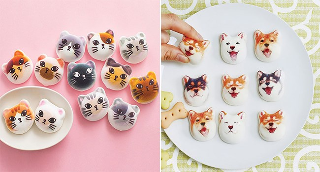 marshmallows shibu inu japanese cute Cats hot cocoa - 7858181