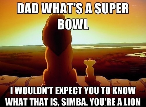 the lion king nfl Memes football - 7858243840