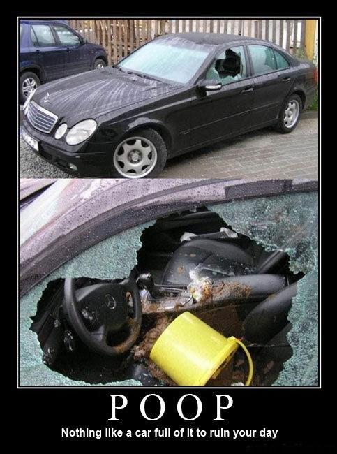 wtf poop car funny - 7858280960