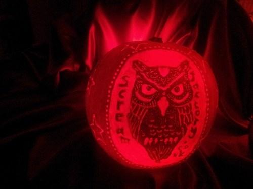pumpkins jack o lanterns g rated Owl - 7858300928