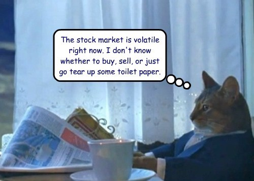 Stock Market Business Cat Cats funny - 7858316288