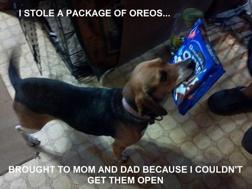 Oreos cute good boy cookies - 7858334720