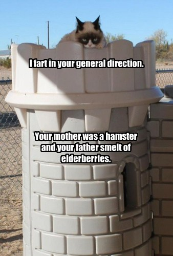 I fart in your general direction.