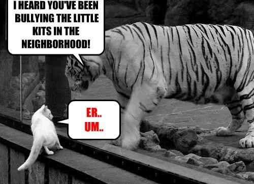 I HEARD YOU'VE BEEN BULLYING THE LITTLE KITS IN THE NEIGHBORHOOD! ER.. UM..