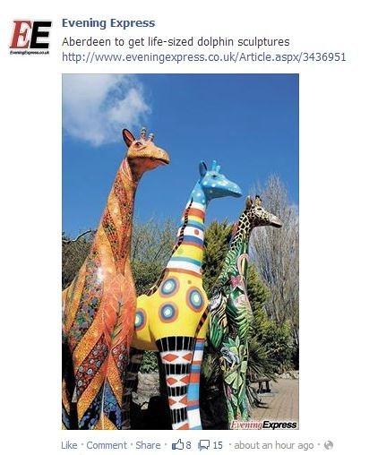 dolphins giraffes - 7859062528