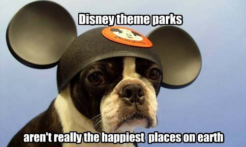 Disney theme parks aren't really the happiest places on earth