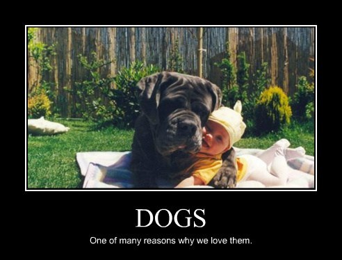 Babies,dogs,cute,love
