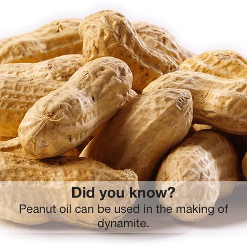 peanut oil science Chemistry dynamite funny - 7859397888