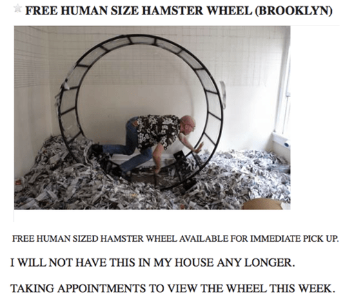 hamster wheels wtf human sized hamster wheel funny