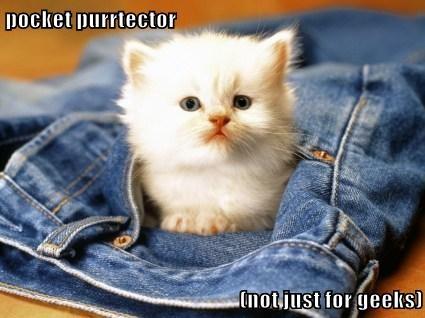 pocket protector kitten cute - 7859461888