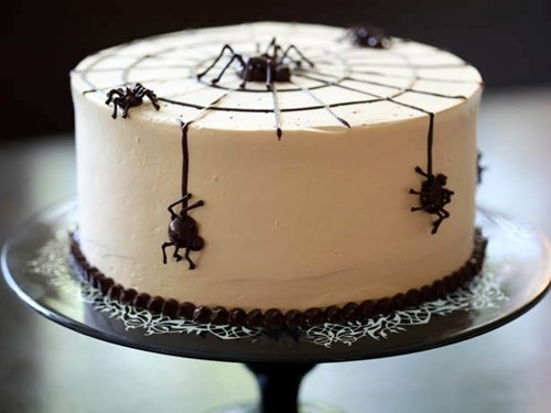cake,spiders,g rated,food