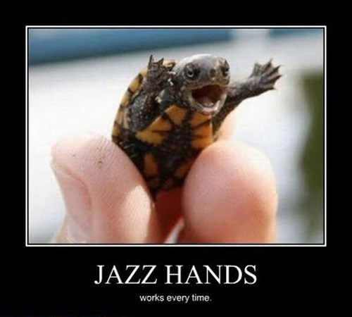 jazz hands cute turtle funny animals - 7859729152
