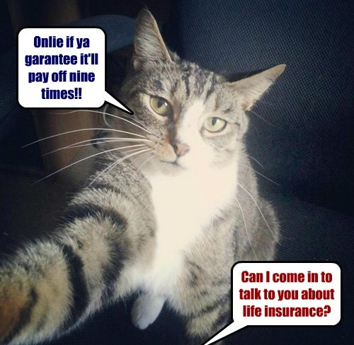Can I come in to talk to you about life insurance? Onlie if ya garantee it'll pay off nine times!!