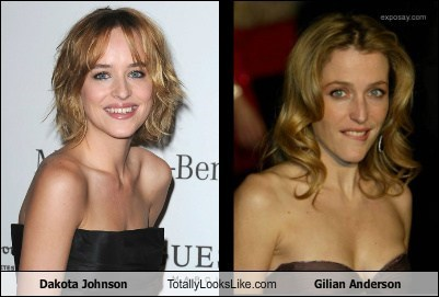 dakota johnson,gilian anderson,totally looks like,funny