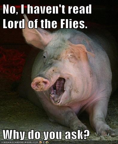 literature,books,pig,lord of the flies