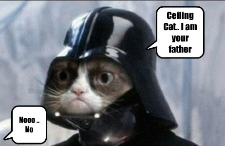 Ceiling Cat.. I am your father Nooo .. No