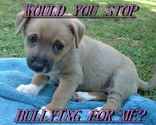 WOULD YOU STOP  BULLYING FOR ME?