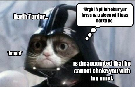 Darth Tardar... is disappointed that he cannot choke you with his mind. *Urgh! A pilloh obur yur fayss az u sleep will juss haz ta do. *hmph!*