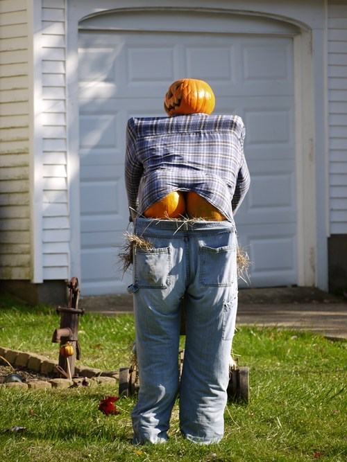 pumpkins halloween mooning g rated - 7862677248