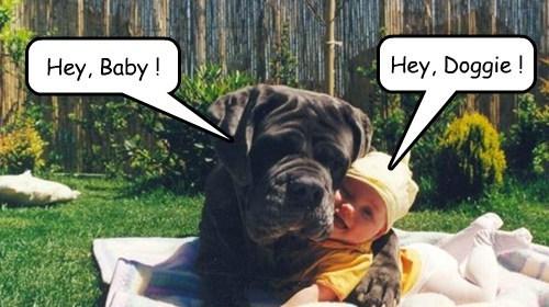 Babies cute love - 7863128832