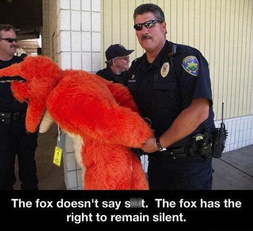 the fox IRL police what does the fox say - 7863457024