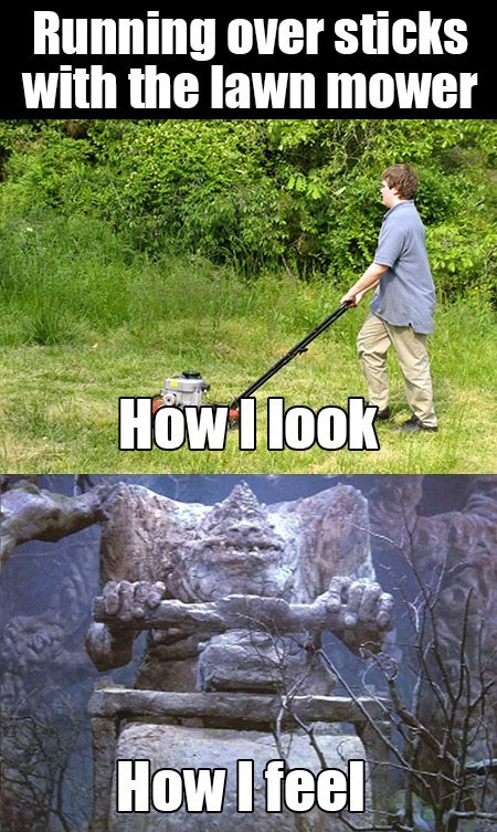 lawnmower what i look like - 7863523840