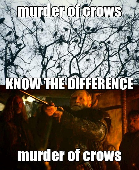 crows Game of Thrones know the difference - 7863599616