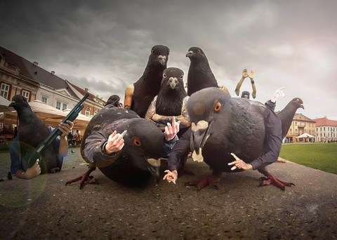 wtf arms mutants pigeons funny - 7863686400