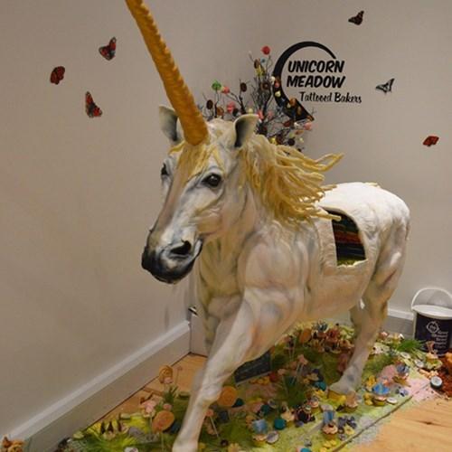 cake unicorn funny g rated win - 7864044032