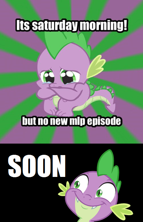 sad spike spike saturday mlp season 4 - 7864149248