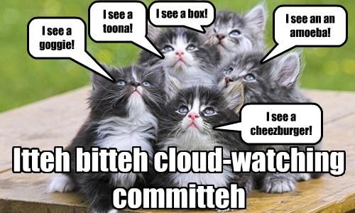 Itteh bitteh cloud-watching committeh I see a goggie! I see a toona! I see a cheezburger! I see an an amoeba! I see a box!