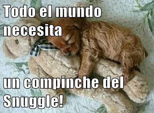 Todo el mundo necesita   un compinche del Snuggle!