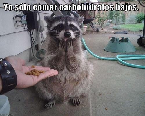 Yo sólo comer carbohidratos bajos.