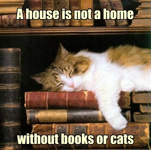 nap books Cats home - 7865247488