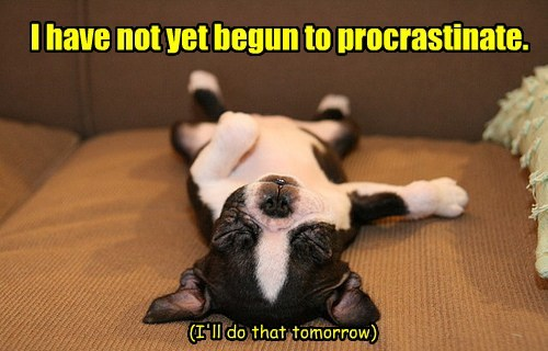 I have not yet begun to procrastinate. (I'll do that tomorrow)