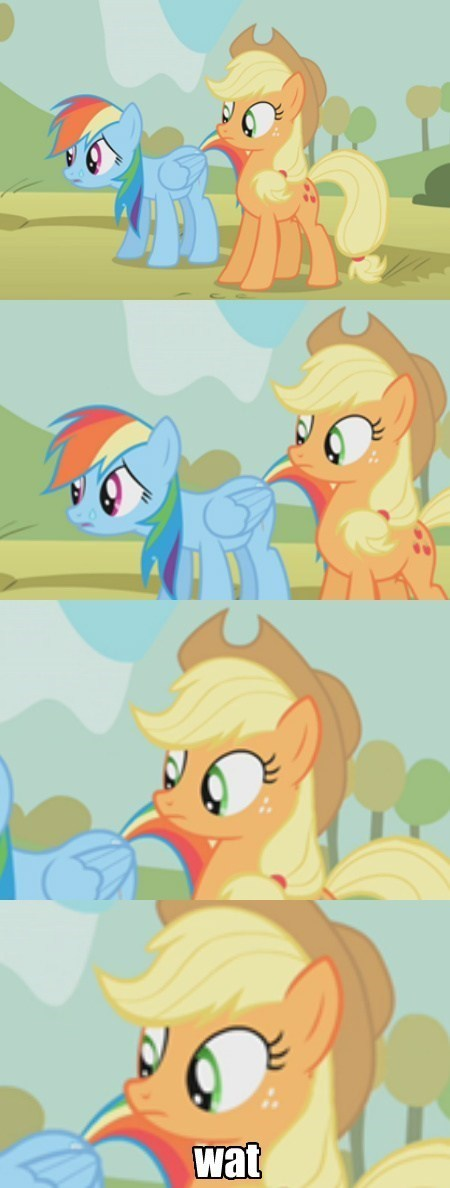 applejack,wat,rainbow dash
