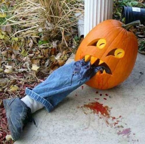 halloween jack o lanterns g rated - 7865597440