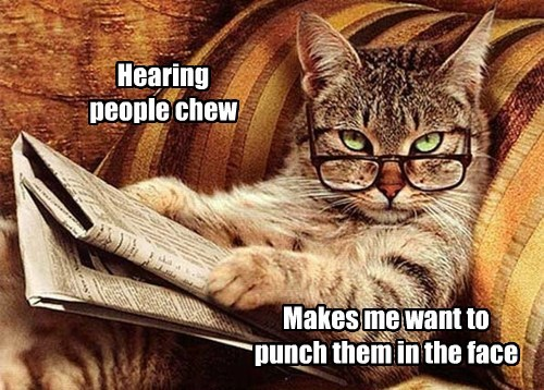 Hearing people chew Makes me want to punch them in the face