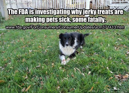 Jerky Treats Sickening & Killing Dogs (Again)