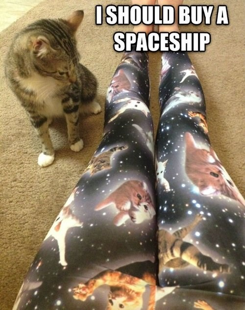 fashion leggings Cats space poorly dressed g rated - 7866596864
