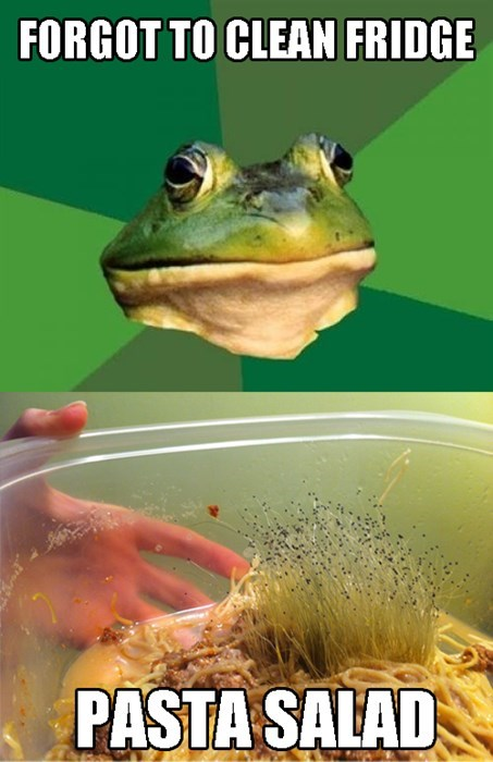 gross foul bachelor frog Memes food - 7866796032