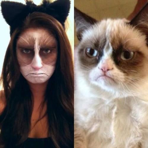 costume Grumpy Cat halloween Cats - 7866943232