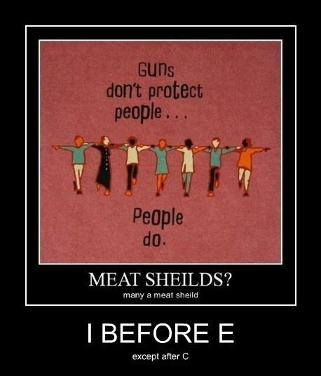 grammar i before e funny shields - 7867526400