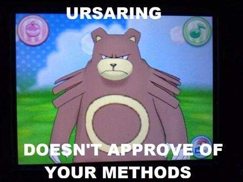 Pokémon ursaring - 7867729152