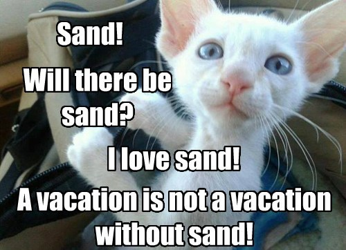 Sand! Will there be sand? I love sand! A vacation is not a vacation without sand!