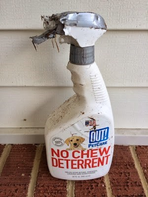 dogs,chew deterrent,funny