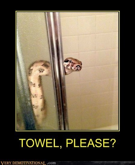 scary wtf shower funny snake